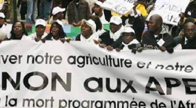 afrique-media-cameroun